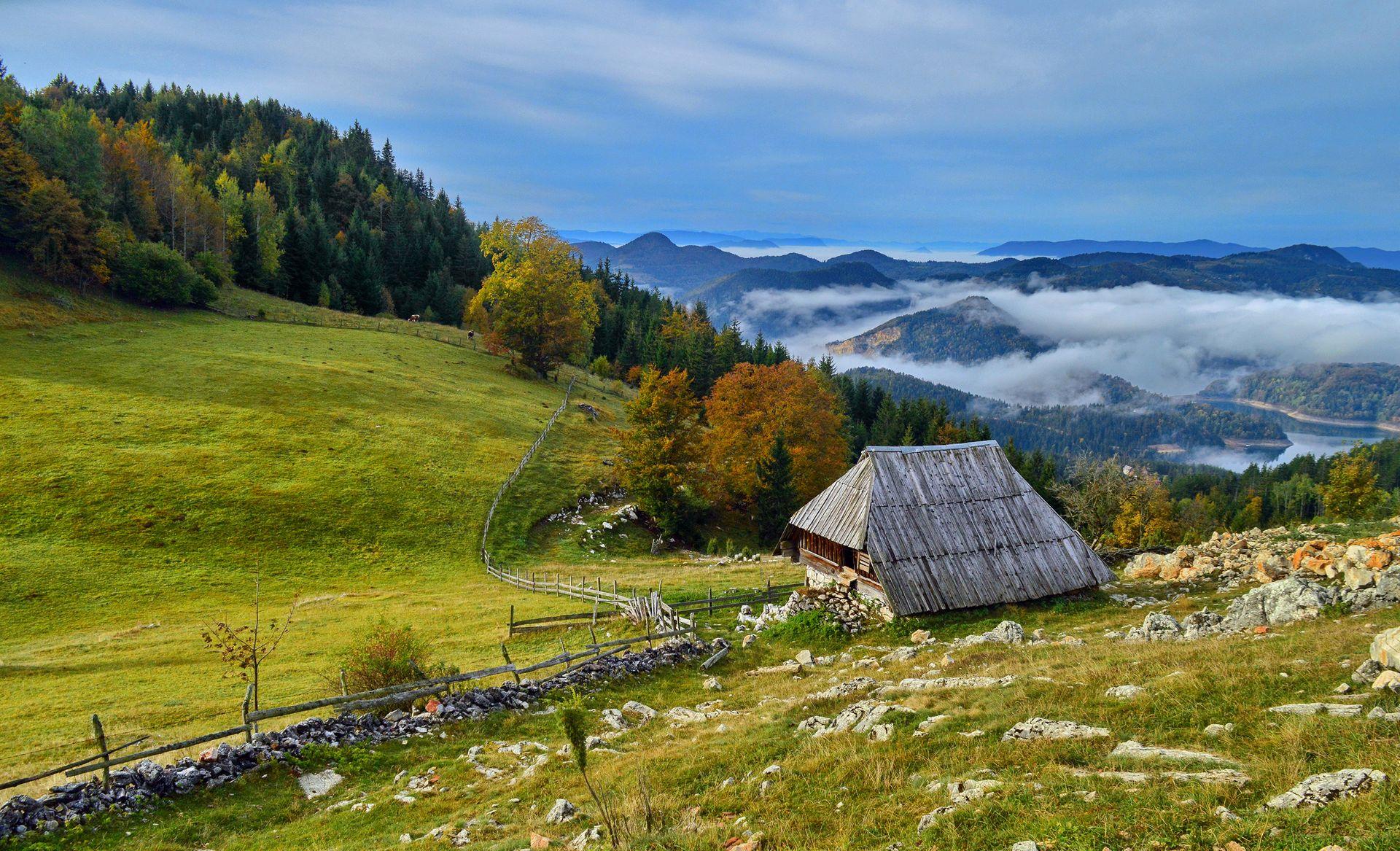 Jesenje jutro na Tari (Autumn morning), Miloš Karaklić