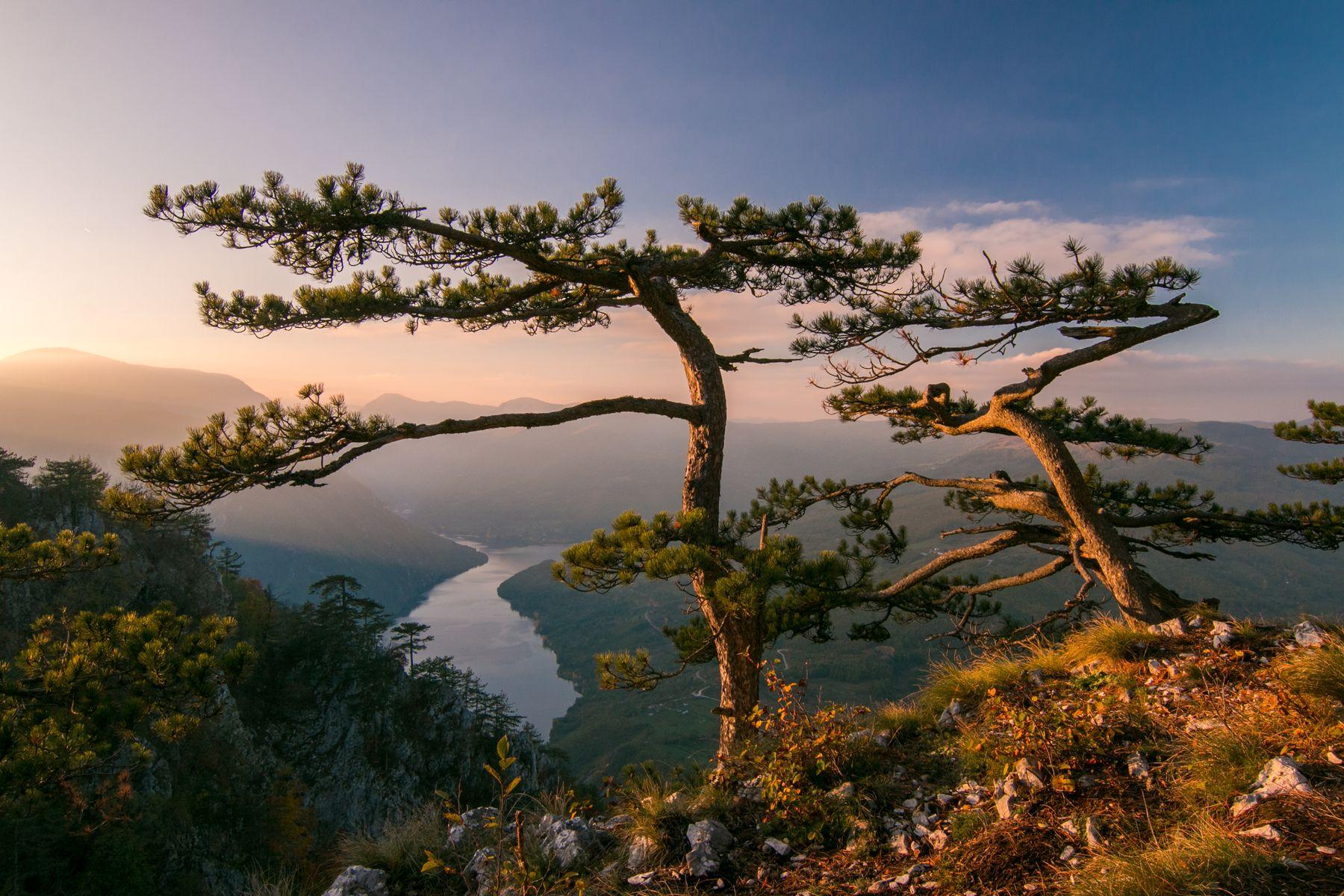 Zalazak sa najlepšim pogledom (Sunset with the most beautiful view), Nenad Marić